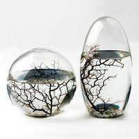EcoSphere - Large - Prezzybox Gifts