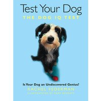 Test Your Dog: Is Your Dog An Undiscovered Genius? - Dog Gifts