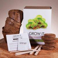 Grow it - Carnivorous Plants - Prezzybox Gifts