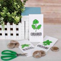 Indoor Allotment - Prezzybox Gifts