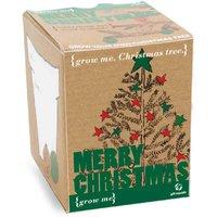 Grow Me - Christmas Tree - Prezzybox Gifts