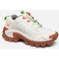Caterpillar - Intruder - Sneaker für Damen / weiß