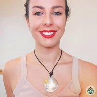 Large Shell Disk Necklace