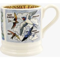 Seconds Kingfisher and Insect Eaters 1/2pt Mug