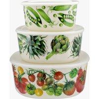 Vegetable Garden Set of 3 Storage boxes