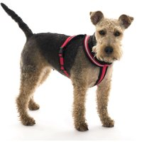 HALTI Comfy Harness Red - Toy