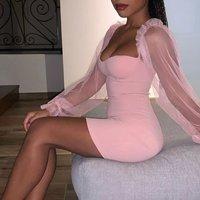 Rose Pink Sheer Sleeve Bustier Detail Bodycon Mini Dress