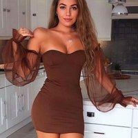Brown Sheer Sleeve Bustier Detail Mini Dress