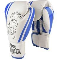 Image of Lonsdale Club Training Gloves - White/Blue, 10oz