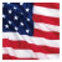Miniservilletas con la bandera de EE
