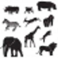10 Decoraciones animales de la jungla