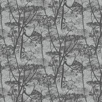 Cole & Son Wallpaper Cow Parsley 112/8026