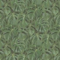 Albany Wallpaper Rainforest 441802