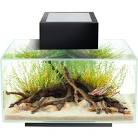 Fluval Edge Fish Aquarium 23 Litre Gloss Black