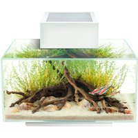 Fluval Edge Fish Aquarium 23 Litre Gloss White