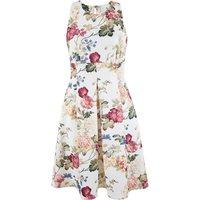 Closet Muse Floral Scuba Dress
