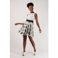Monochrome Flared Dress
