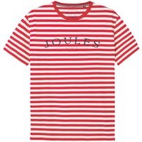 Joules Flynn Graphic Print T-Shirt  Large