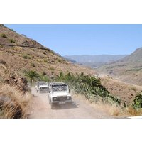 4x4 Safari + Camel Ride - From Other Areas