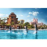 Dolphin Bay - Atlantis Dolphin Bay