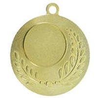 Workshop Gouden medaille 50 mm kopen