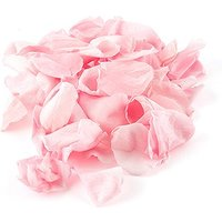 Preserved Natural Rose Petals - Pastel Pink