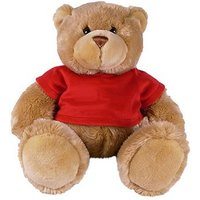 Page Boy Teddy Gift with Red T Shirt