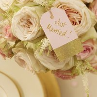 Pastel Pink and Gold Luggage Tags