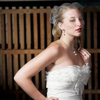 Bird Cage Style Veil - White With Added Crystals