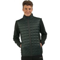 Chilton Hybrid Jacket Dark Spruce