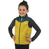 Icebound Gilet Moss Teal