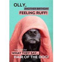 Birthday Card - Photo Humour Animal Antics Hair Of The Dog, Standard Size By Moonpig