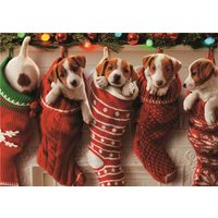 Puppies In Stockings Christmas Card, Large Size By Moonpig