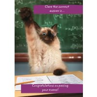 Congrats On Passing Your Exams Personalised Card, Giant Size By Moonpig