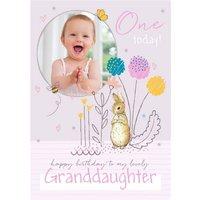Peter Rabbit Granddaughter 1st Birthday Photo Upload Card
