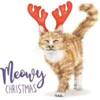 Meowy Christmas Cat Pun Card, Square Card Size By Moonpig