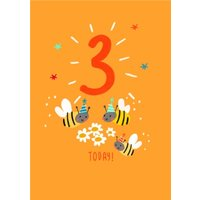 Cute Illustrated Bees And Daisies 3 Today Birthday Card, Large Size By Moonpig
