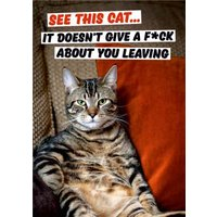Dean Morris See This Cat Funny Leaving Card, Standard Size By Moonpig