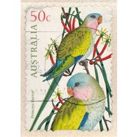 Tropical Bird Stamp Card, Large Size By Moonpig