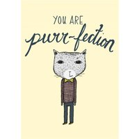 You Are Perfection Cat Card, Large Size By Moonpig