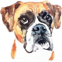 Illustrated Watercolour Dog Boxer Just A Note Card, Square Card Size By Moonpig