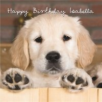 Golden Retriever Dog Birthday Card, Large Square Card Size By Moonpig