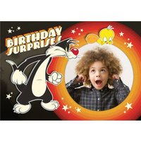 Looney Tunes Sylvester And Tweety Pie Photo Upload Birthday Card