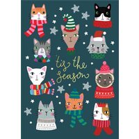 Cute Christmas Cats Tis The Season Card, Standard Size By Moonpig