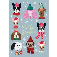 Cute Christmas Dogs Tis The Season Card, Standard Size By Moonpig