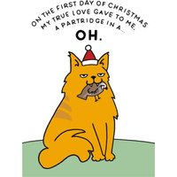 First Day Of Christmas Partridge And Cat Funny Card, Giant Size By Moonpig