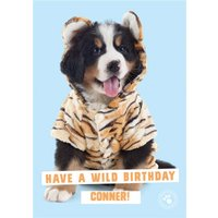 Cute Dog Wearing A Onesie - Personalised Birthday Card, Large Size By Moonpig