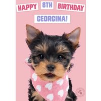 Studio Pets Birthday Card Yorkshire Terrier Puppy With A Handkerchief , Giant Size By Moonpig