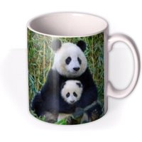 Mother's Day Panda Personalised Mug by Moonpig, Gift Set - Delivery Available