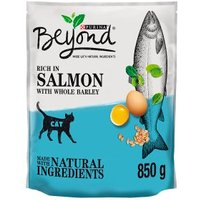Beyond Dry Cat Food With Salmon